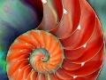 fractal_119